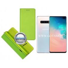 Re-Grid magnetinis dėklas Samsung Galaxy S10+ telefonams salotinės spalvos Telšiai | Palanga | Palanga
