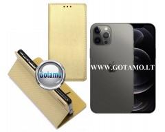 Re-Grid magnetinis dėklas Apple iPhone 12, Apple iPhone 12 Pro mobiliesiems telefonams aukso spalvos