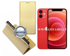 Re-Grid magnetinis dėklas Apple iPhone 12 mini mobiliesiems telefonams aukso spalvos